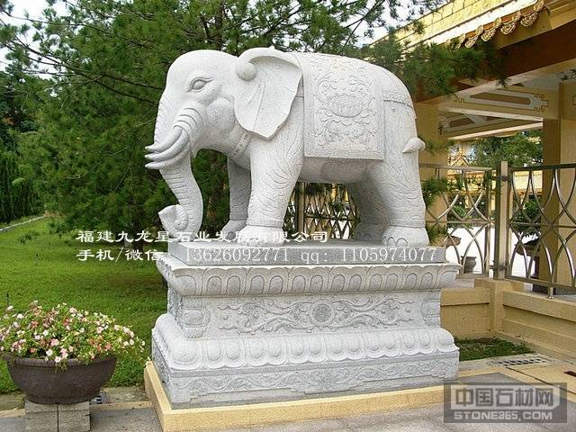 石雕大象定制 福建白麻大象