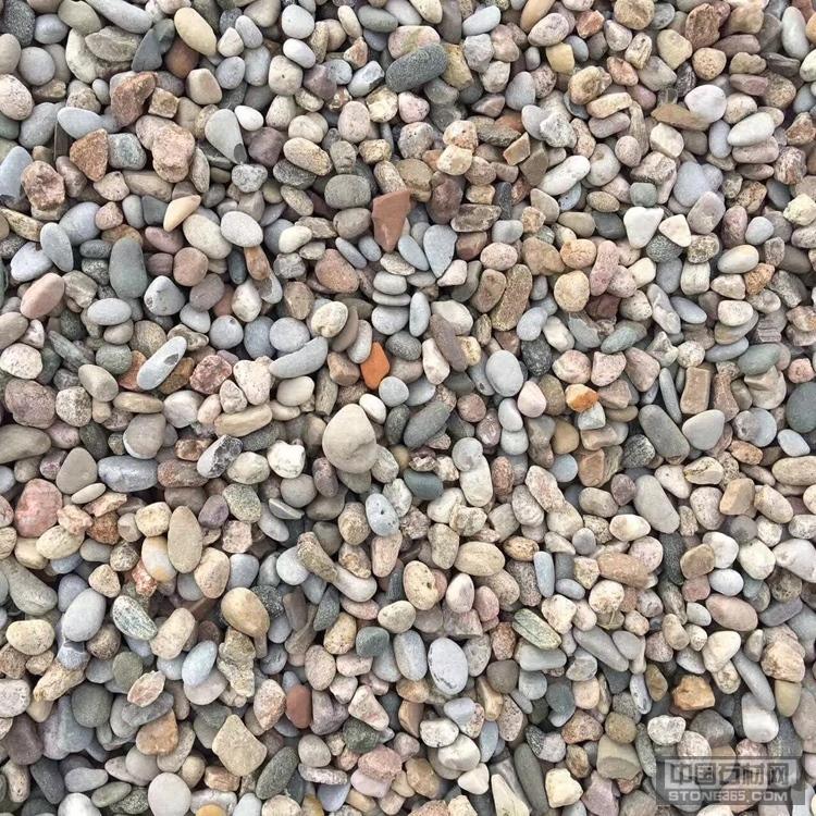 鹅卵石 铺地石 景观园林铺路