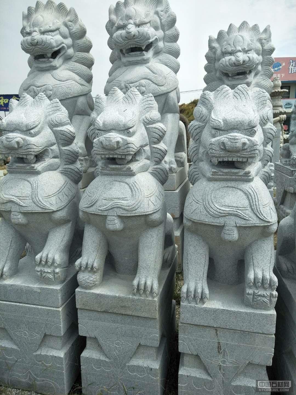 江西芝麻白石狮