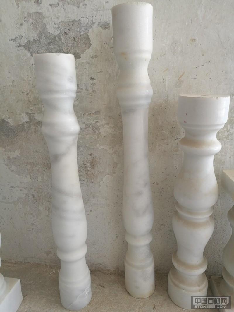 广西白花瓶柱