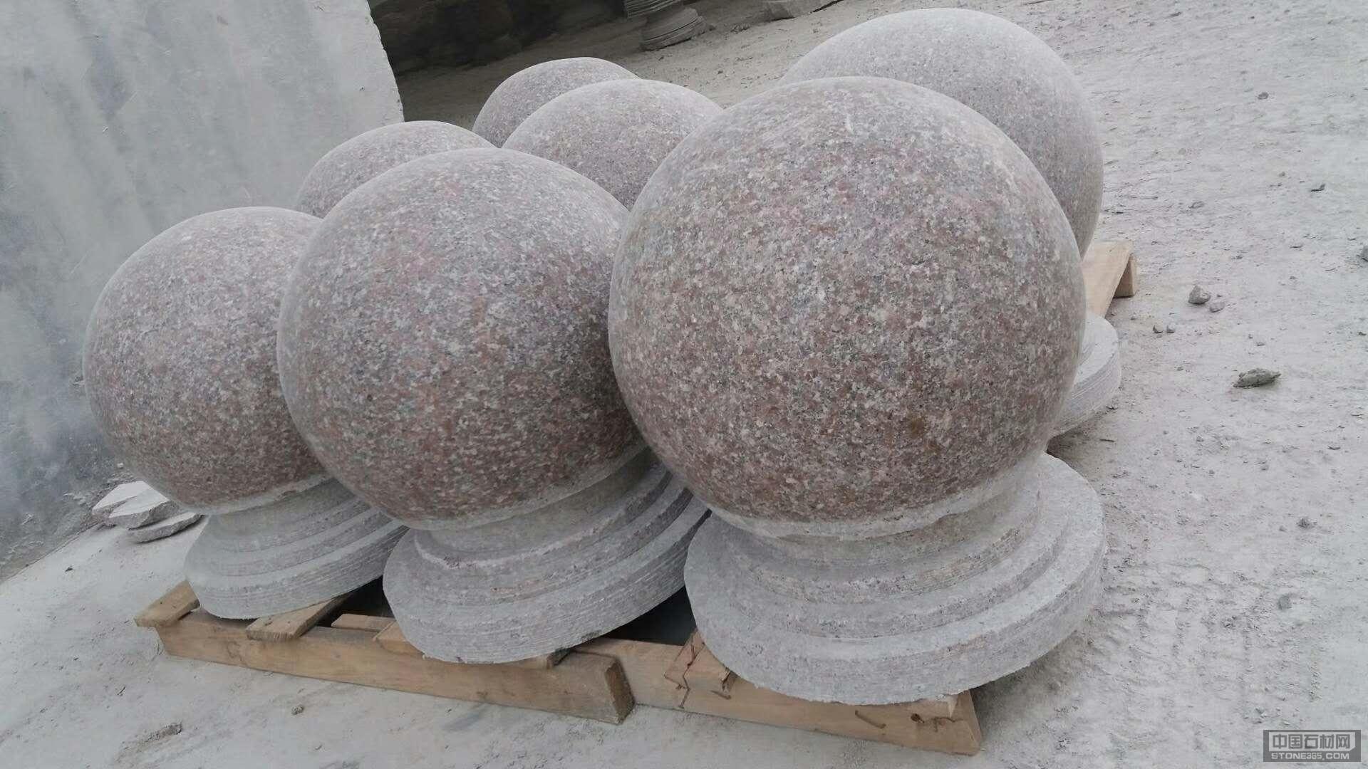 五莲红圆球直径300-600
