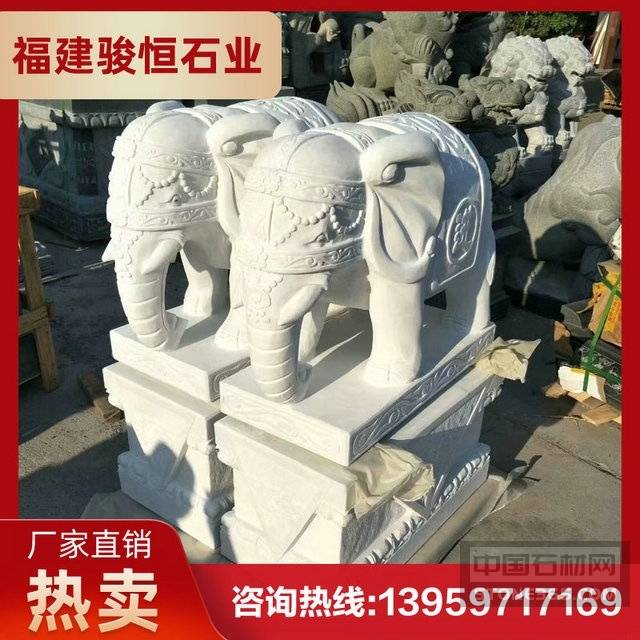 汉白玉石材大象 惠安骏恒石业