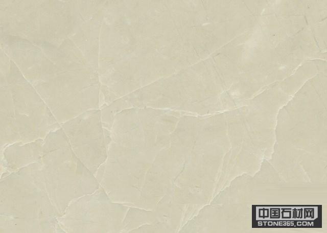 白玉兰(白珍珠)