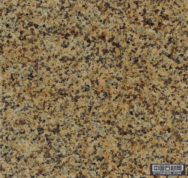 //news.stone365.com/public/pic/images/DefaultImg_new.gif