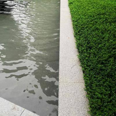 广东芝麻白荔枝面水池板