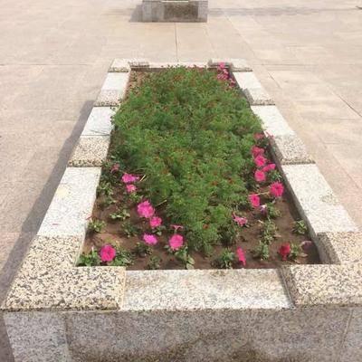 矩形工艺花池