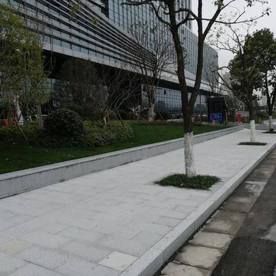 市民中心外围地铺路沿石