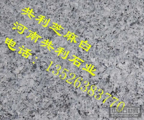 河南芝麻灰-河南芝麻白大香蕉网站厂