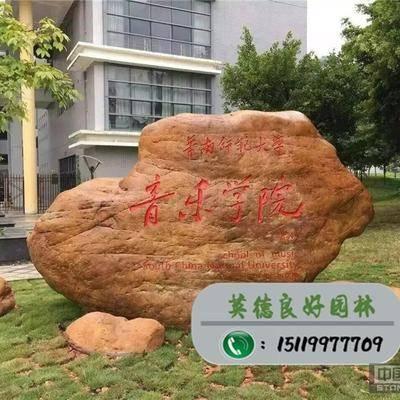 广东黄蜡石--音乐学院