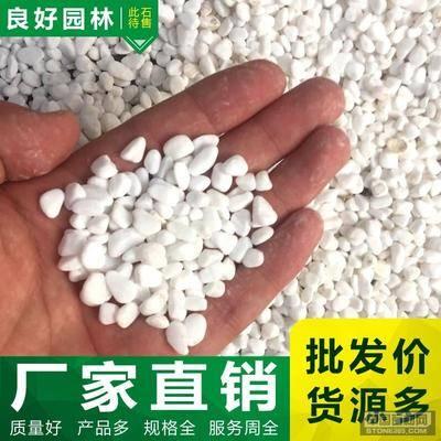 供应白色洗米石批发