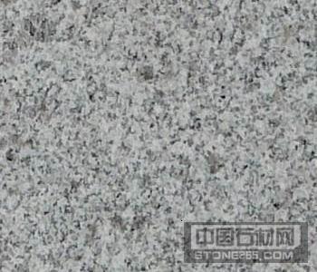 河南芝麻白G603