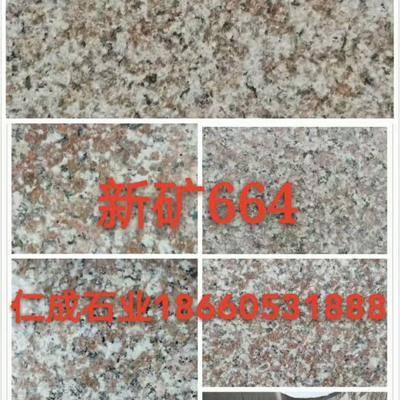 新矿G664海洋红花岗岩罗源红