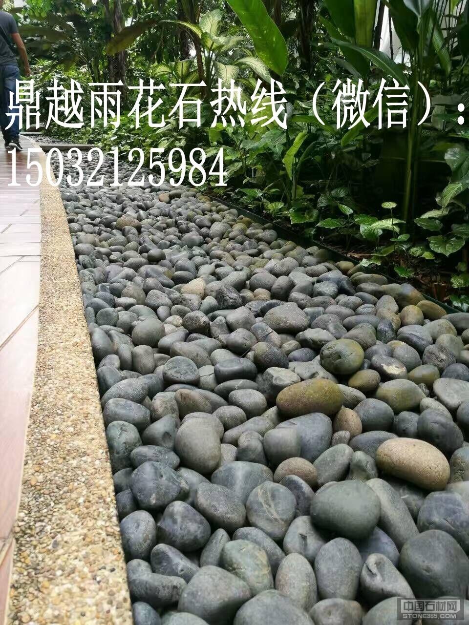 供应园林景观装饰用的黑色鹅卵石