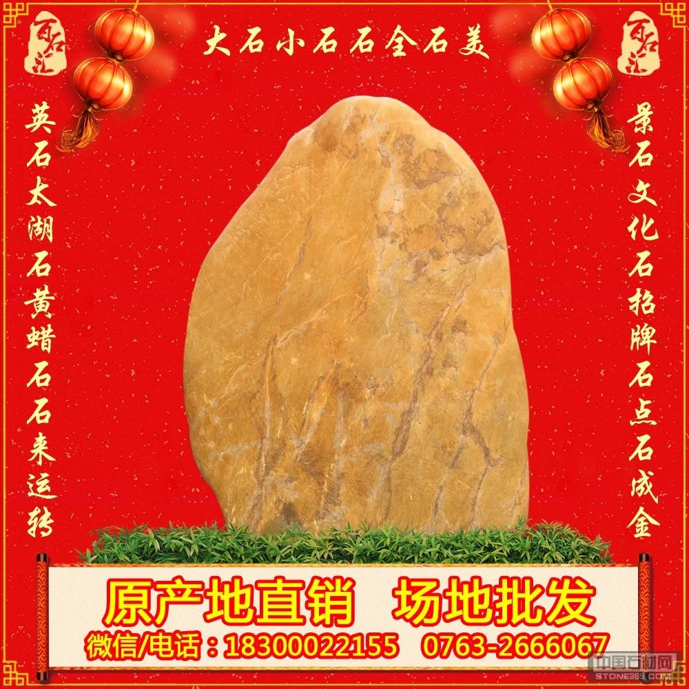 文明校园黄蜡石