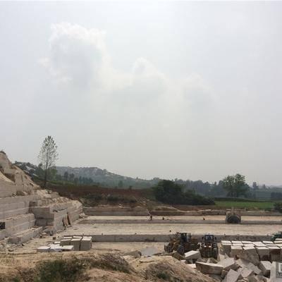 河南黄金麻bwin矿山