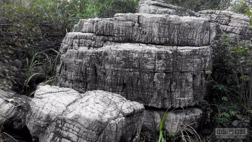 天然龟纹石、景观石