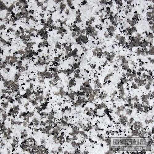 大白花 G439 花岗岩
