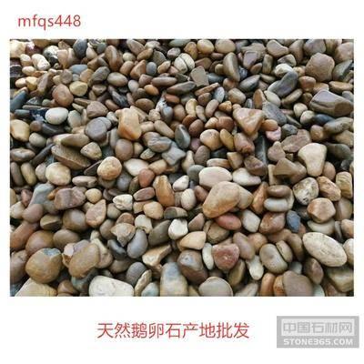 天然鹅卵石产地批发 广东鹅卵石