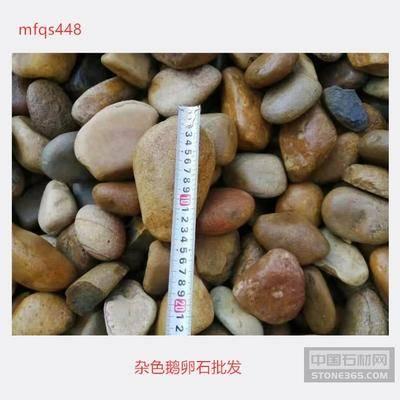 杂色鹅卵石批发 广东鹅卵石图