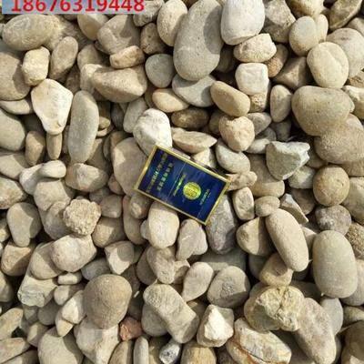 鹅卵石 园林石