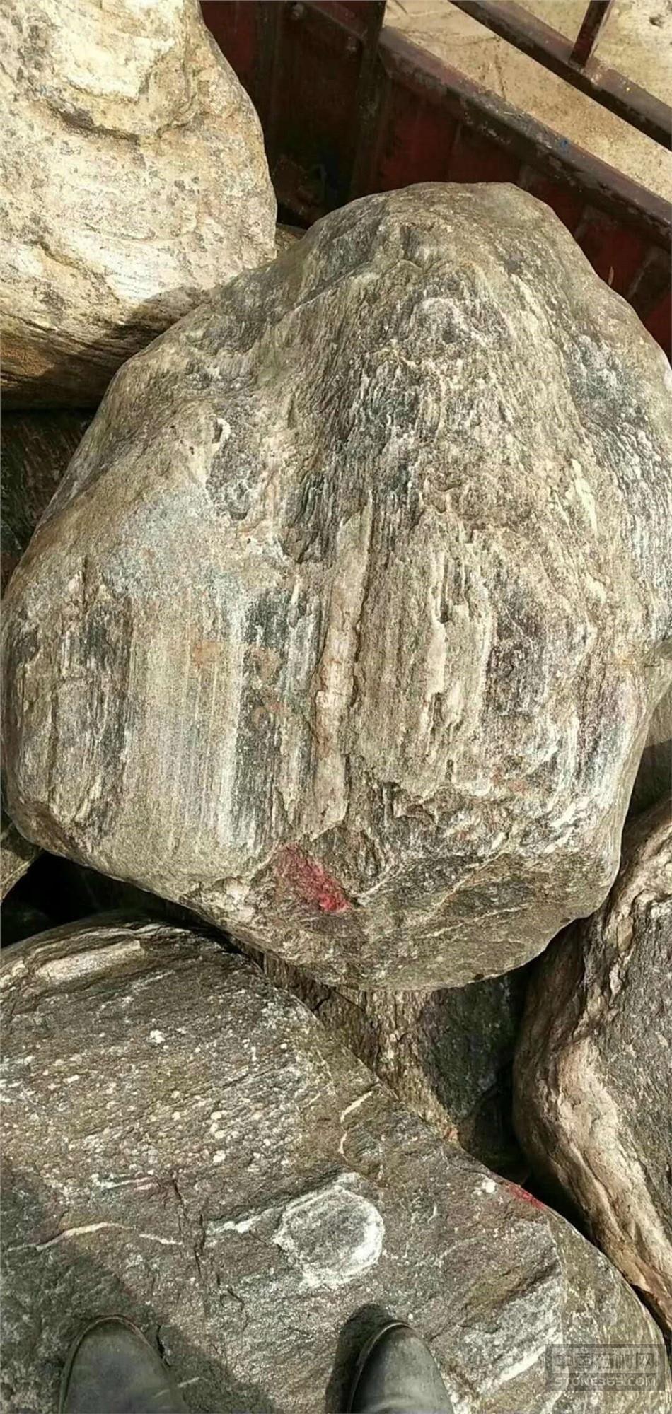 广东假山泰山石石大量直销