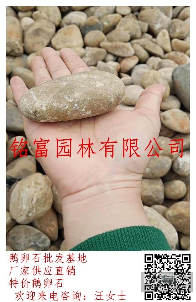 全国批发天然鹅卵石