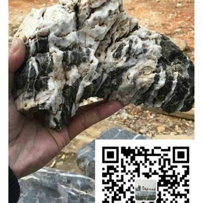 精品盆景石图片