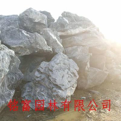 供应大型太湖石批发