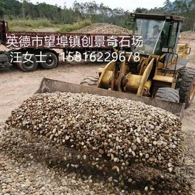 厂家生产托层天然鹅卵石