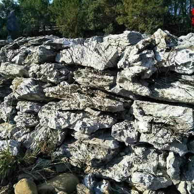 供应好看的假山石