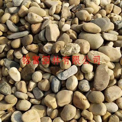 供应全国批发鹅卵石厂家