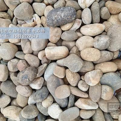 供应天然鹅卵石 园林铺路卵石