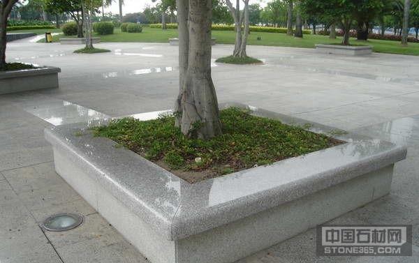 江西芝麻白树围石