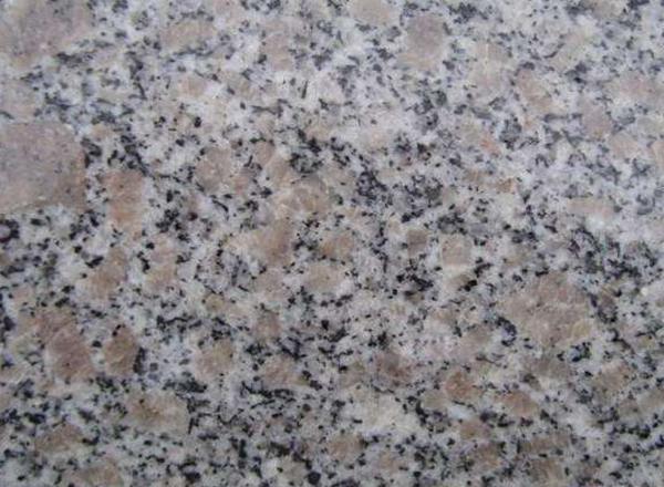 珍珠花石材 龙口珍珠花板材