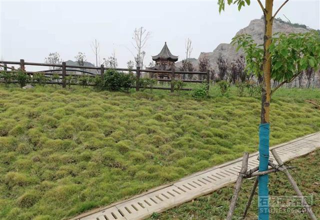 湖北省麻城市2021年上半年经济运转状况:石材加工企业产量同比增加35.3%