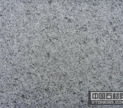 河南芝麻白 g603