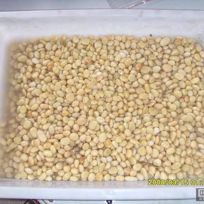 石米 卵石 大理石